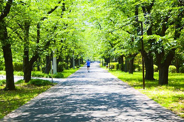 造園・環境緑地設計イメージ画像