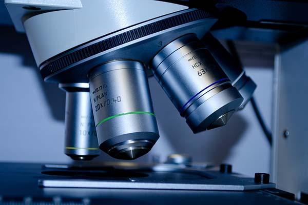 顕微鏡観察業務