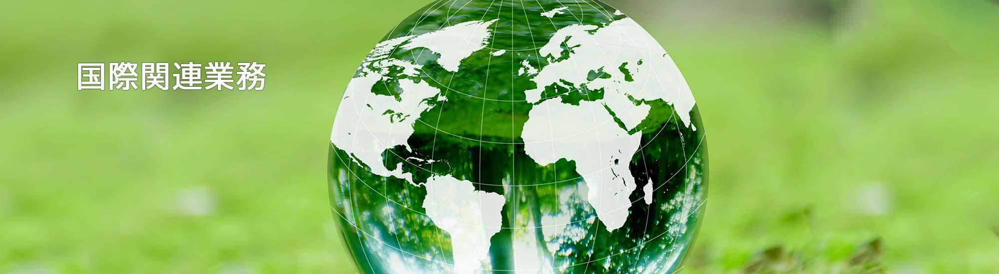 株式会社エイジェックの国際関連業務