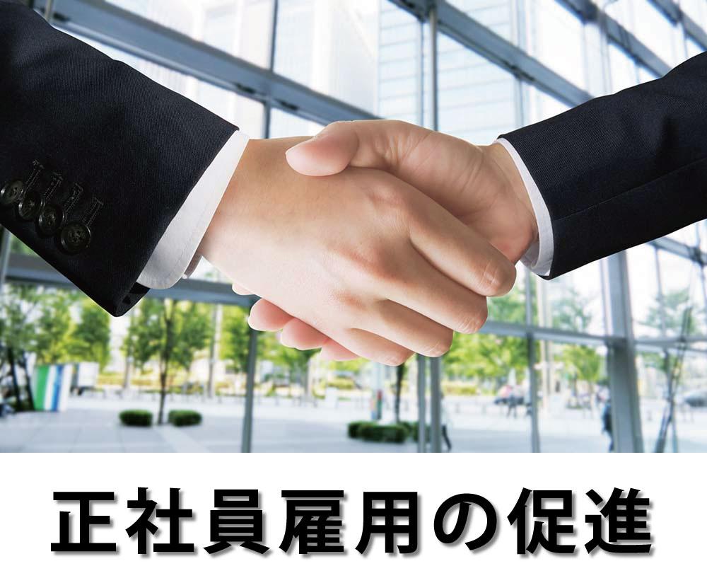 正社員雇用の促進